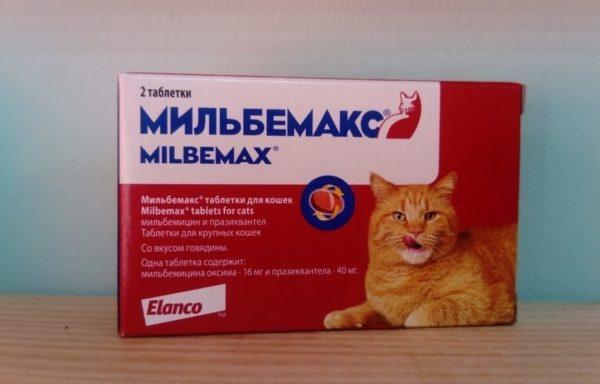 Мильбемакс таблетки от глистов для кошек от 4 до 8 кг
