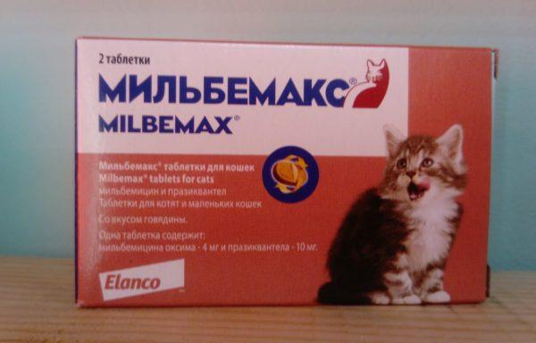 Мильбемакс таблетки от глистов для котят и молодых кошек до 4 кг