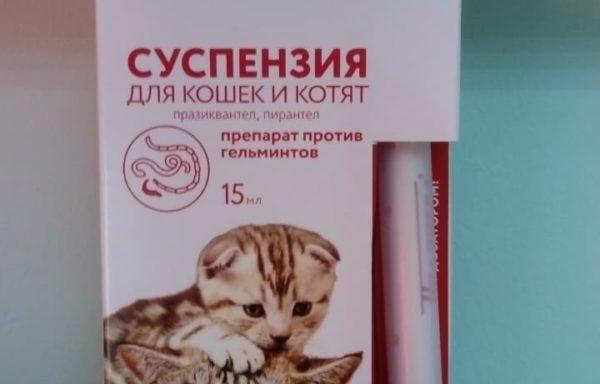 Празител суспензия для котят и кошек от глистов